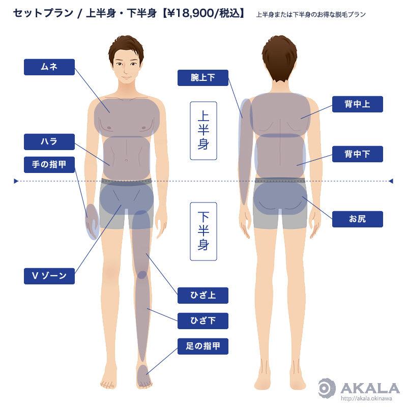 上半身 / 下半身  上半身または下半身のから選べる脱毛セットプラン